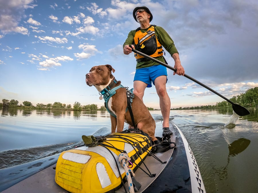 Guy with dog on kayak